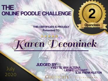 Online Poodle challenge 2020