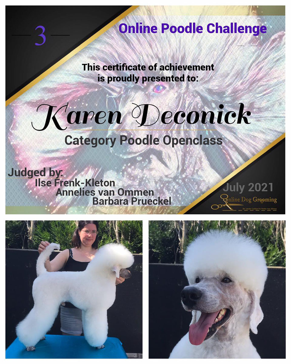 Online Poodle challenge 2021